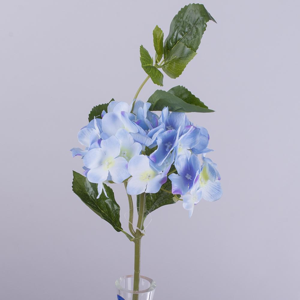гортензія коротка з листком голуба