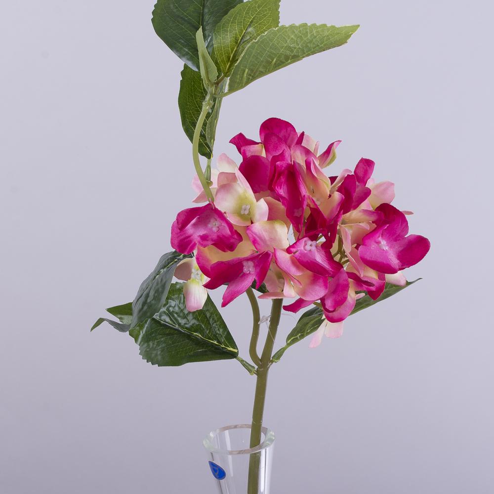 гортензія коротка з листком малинова