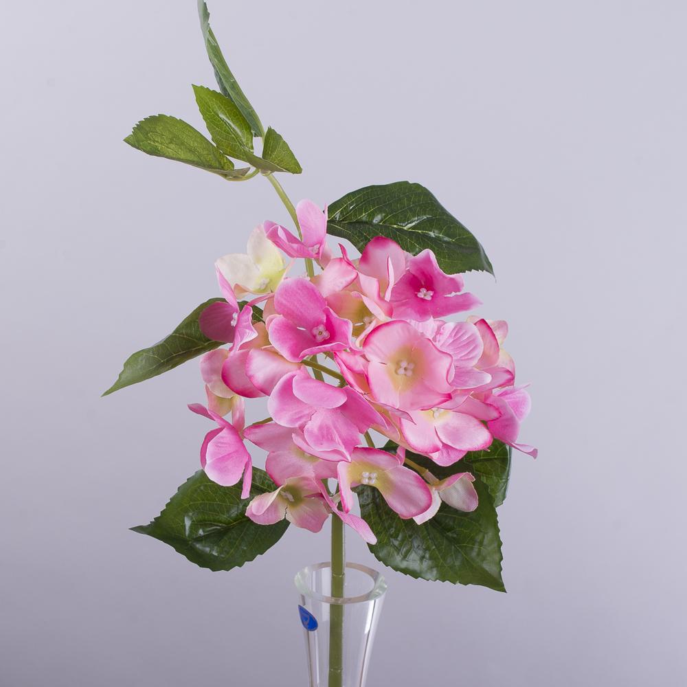 гортензія коротка з листком рожева