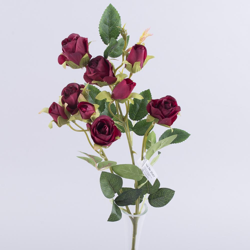 роза кустовая премиум бордо
