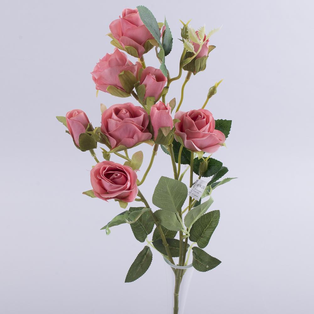 роза кустовая премиум теракотовая
