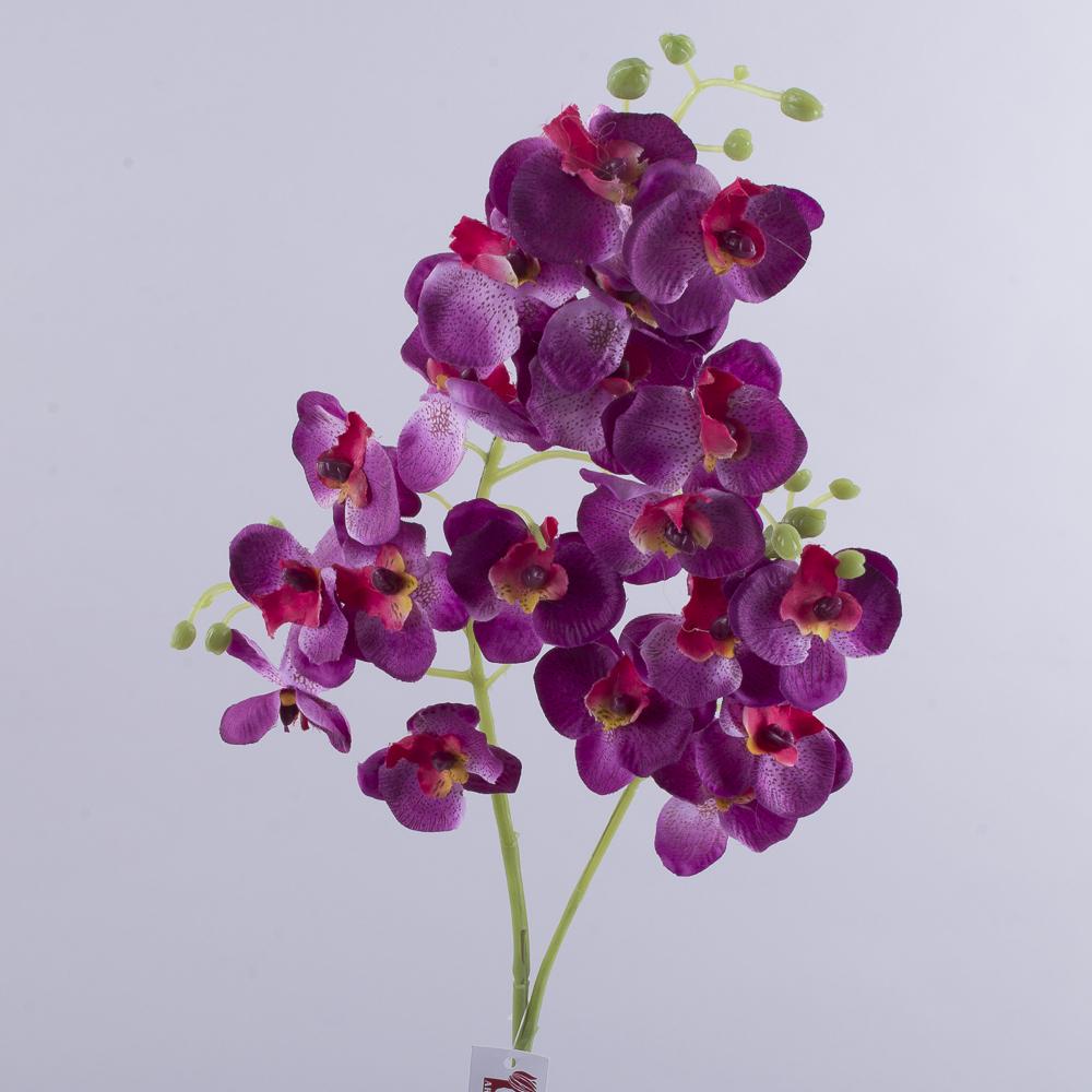 """Орхидея """"мелкоцвет"""" фиолетовая"""