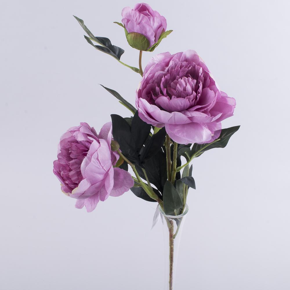 Пион 2 цветка и бутон  фиолетовый
