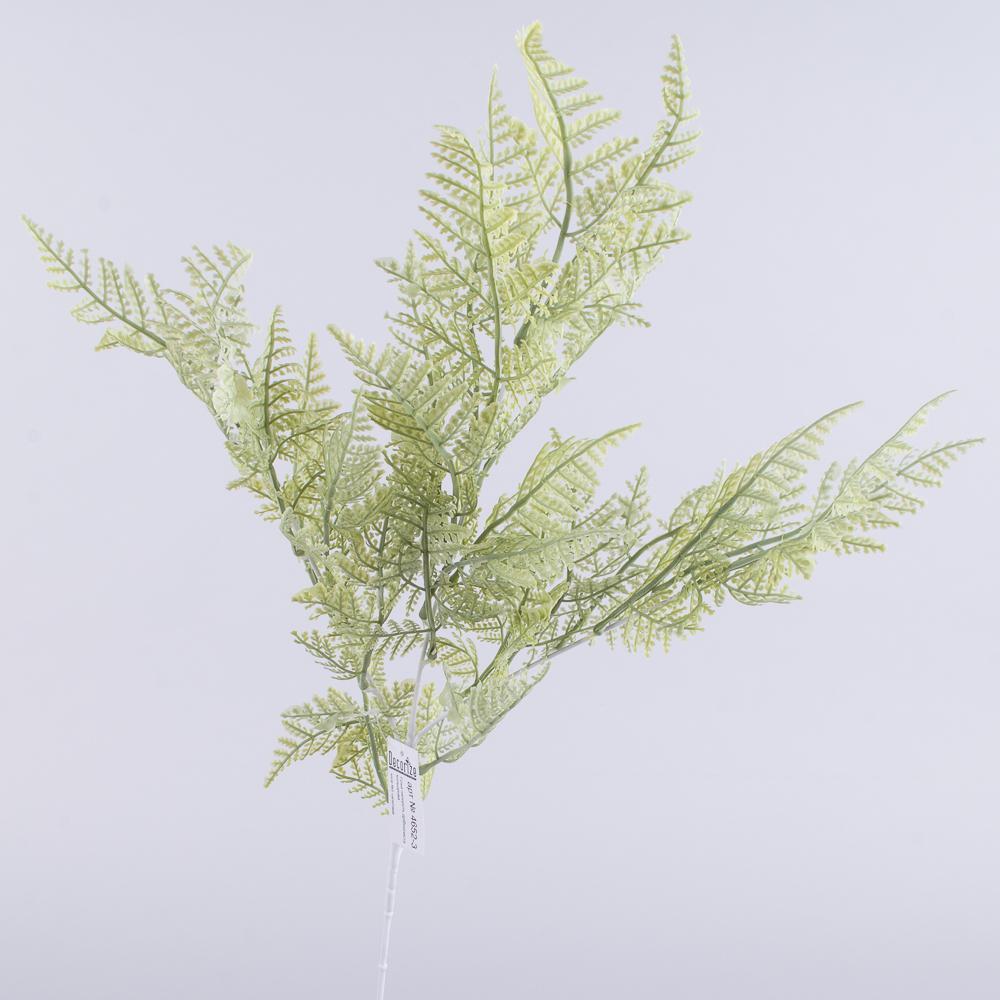 ветвь папоротника мелколистная (зеленая)