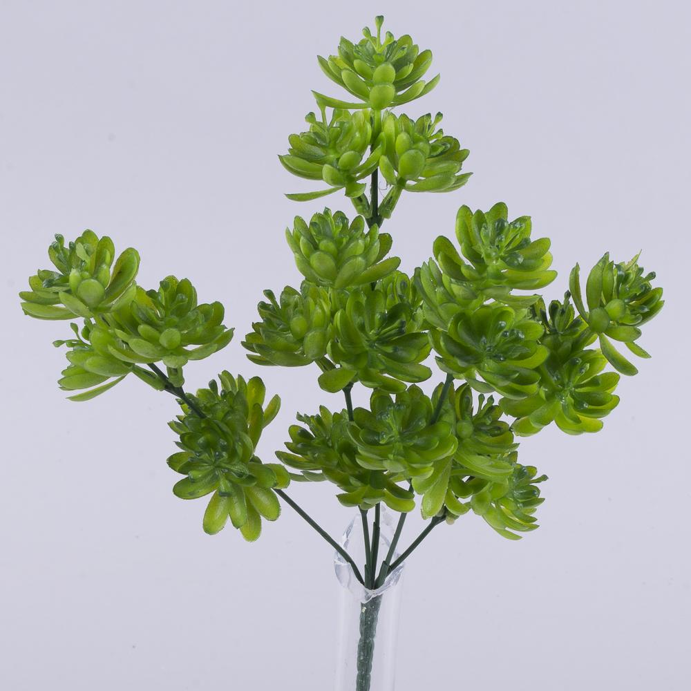 Травка букет - суккуленты (зеленый)