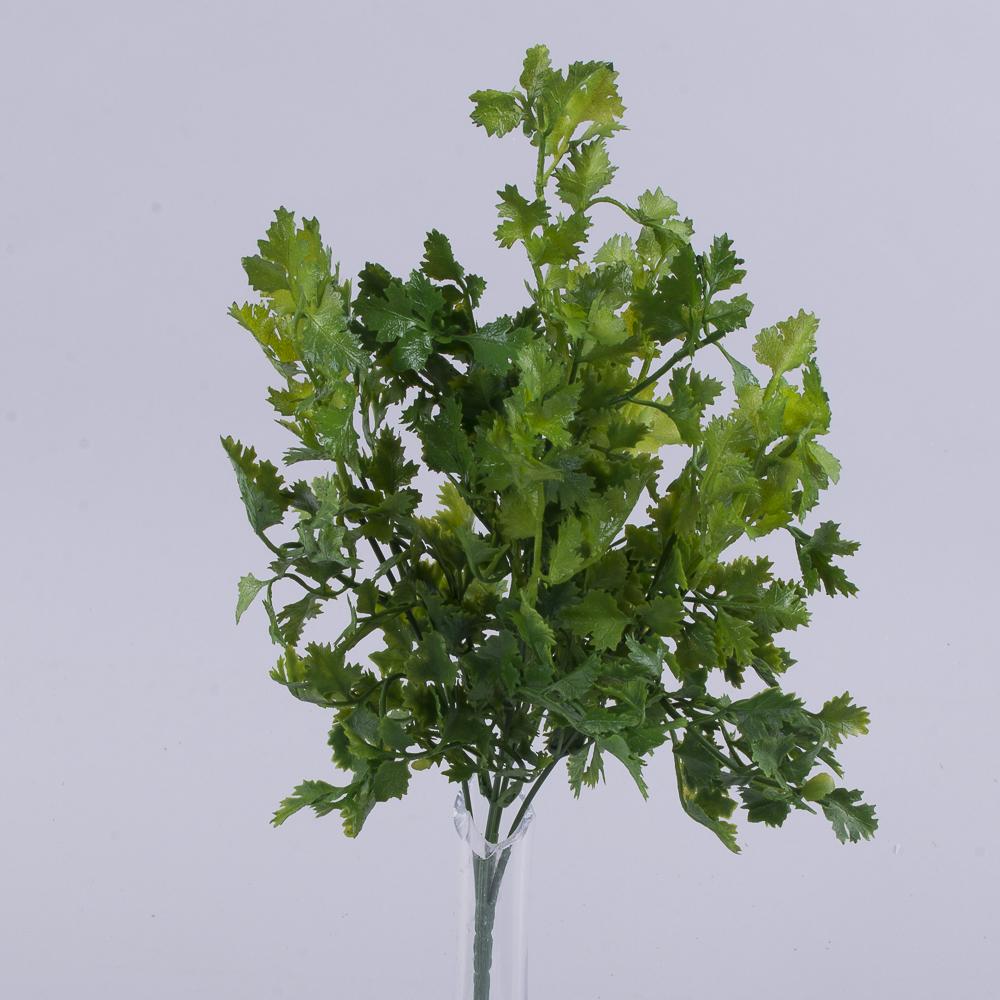 Букет травка кориандр