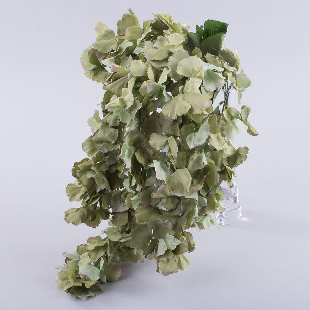 Гортензія преміум звисаюча зелена (G55P20)