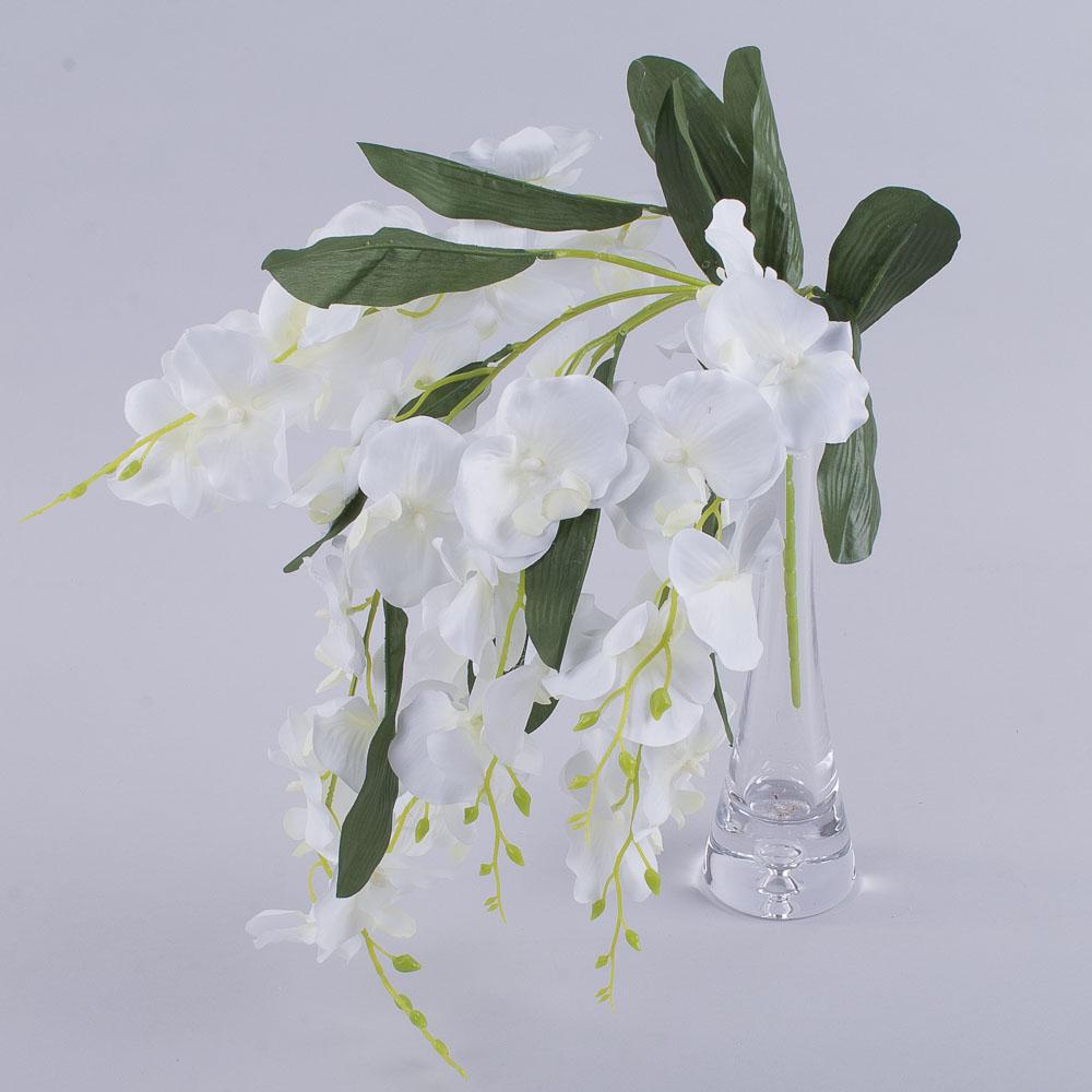 Букет орхідея звисаюча середня