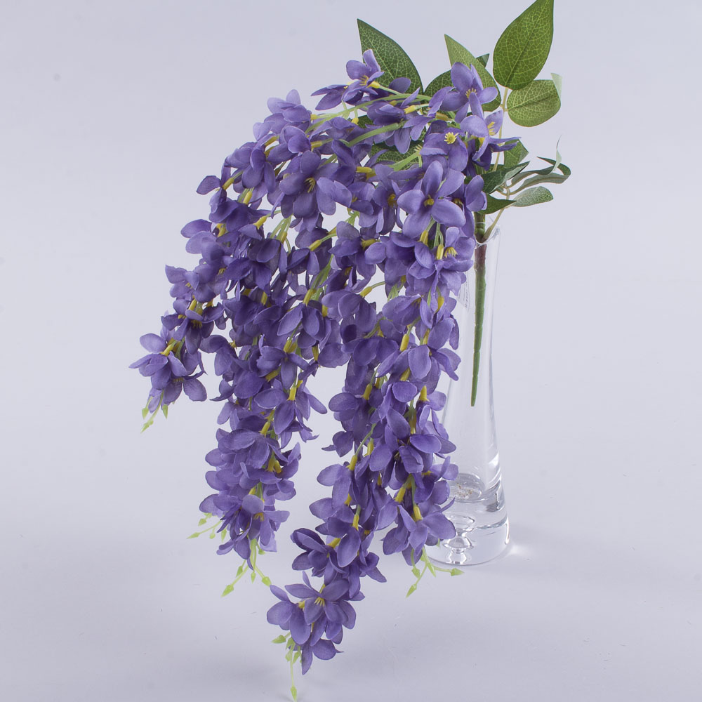 Гліцинія звисаюча фіолетова (V50V55)