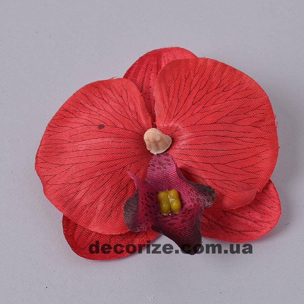 головка орхідеї мала червона
