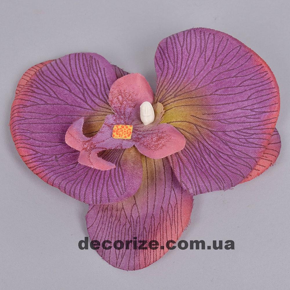 головка орхідеї хамелеон