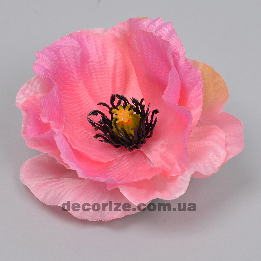 головка маку яскраво рожева